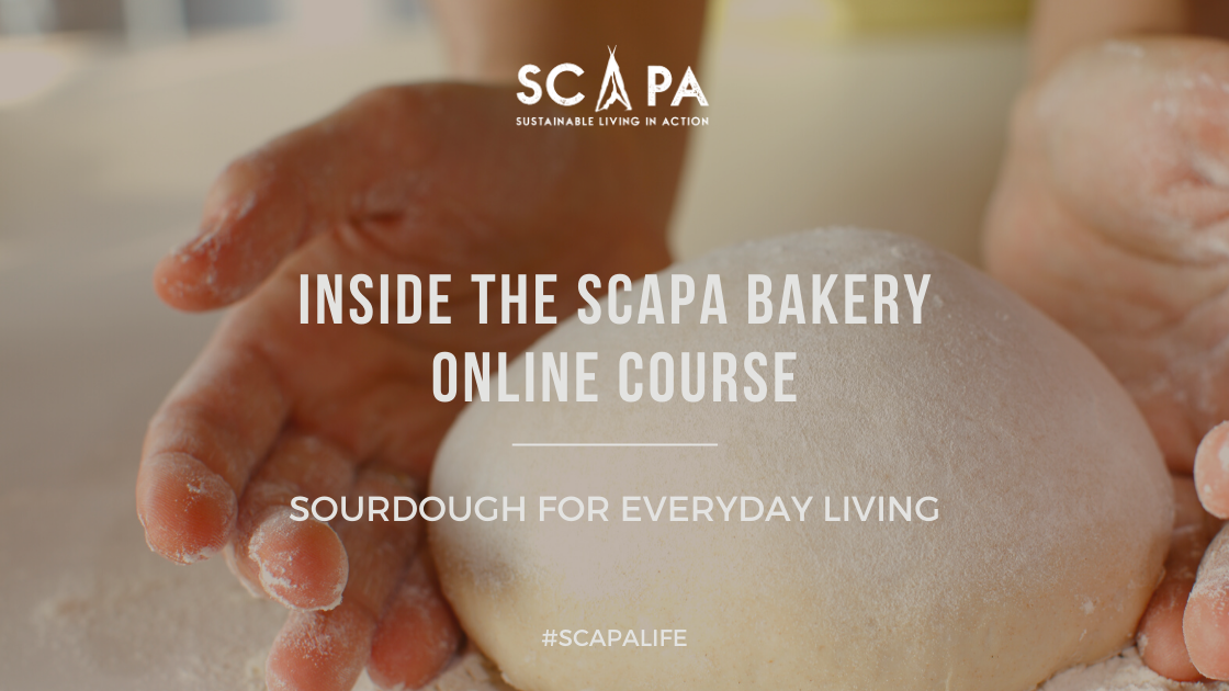 sourdough scapa fest